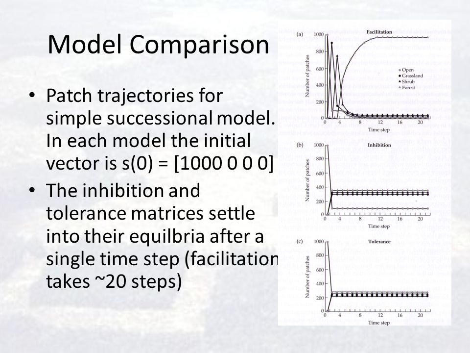 Model Comparison Patch trajectories for simple successional model. In each model the initial vector is s(0) = [1000 0 0 0]